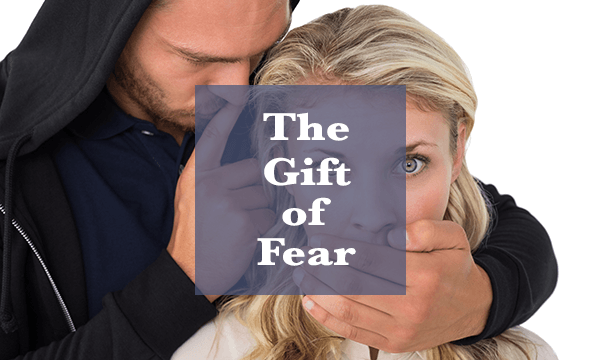 """the gift of fear"" ""threat management"" ""threat assessment"" ""personal safety"""